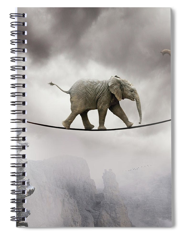 Animal Themes Spiral Notebook featuring the photograph Baby Elephant by By Sigi Kolbe