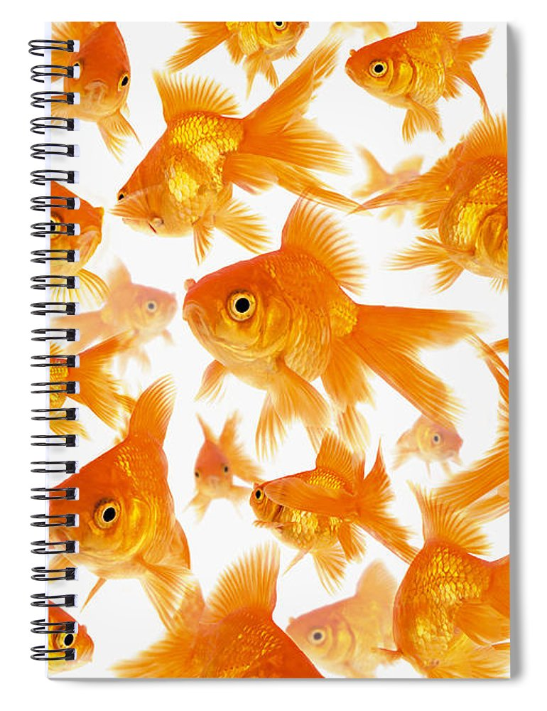 Orange Color Spiral Notebook featuring the photograph Background Showing A Large Group Of by Cocoon