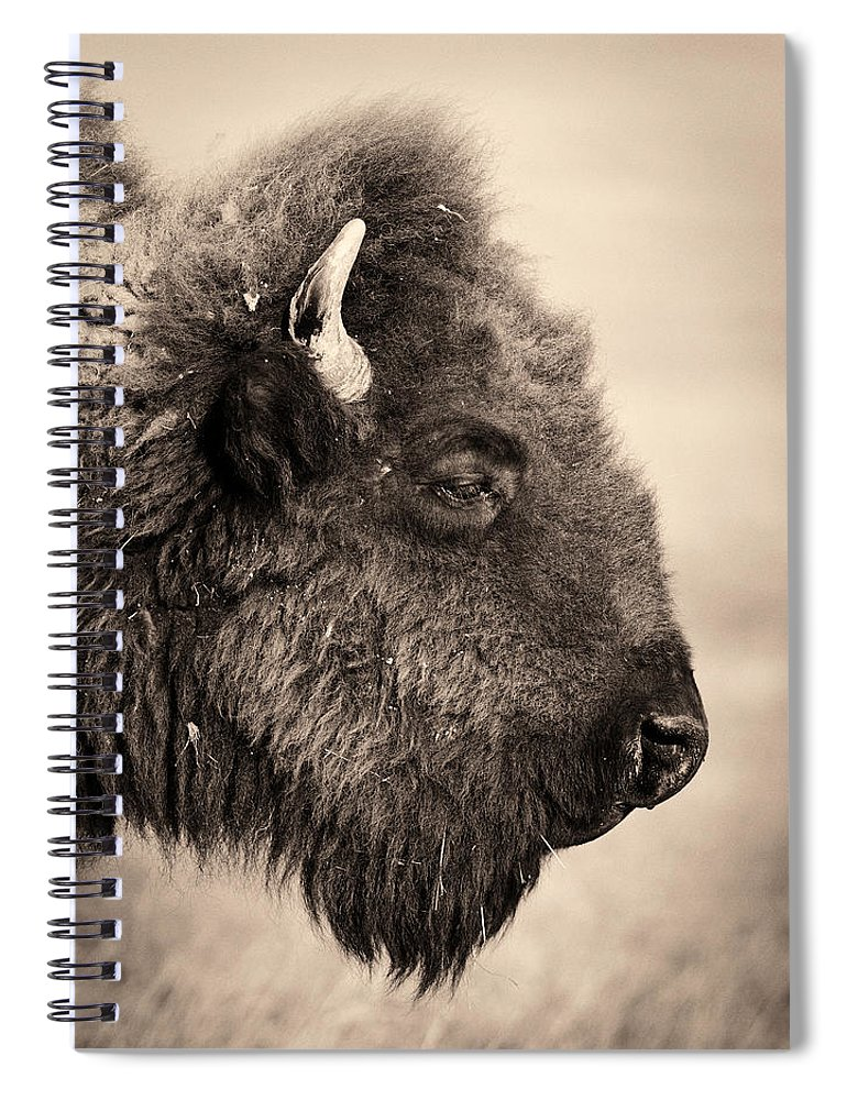 Horned Spiral Notebook featuring the photograph Badlands National Park Portrait Of A by Elementalimaging