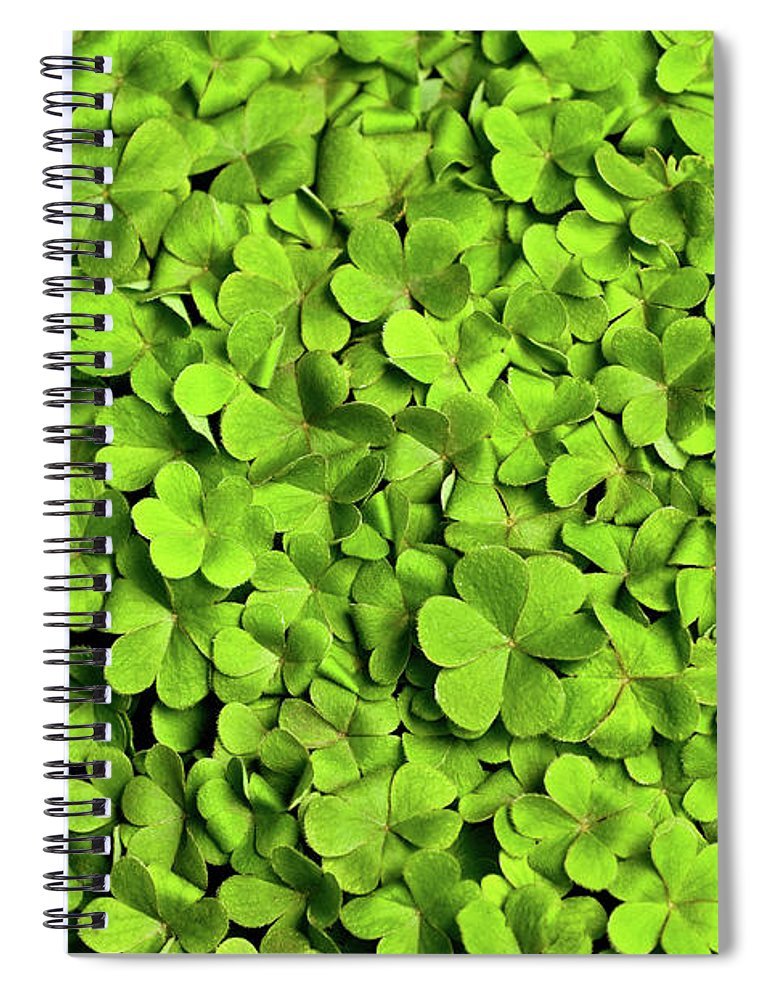 Leaf Spiral Notebook featuring the photograph Bed Of Clover by Kledge