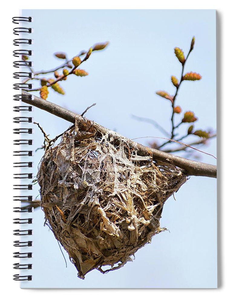 Birds Nest Spiral Notebook featuring the photograph Birds Nest by Christina Rollo