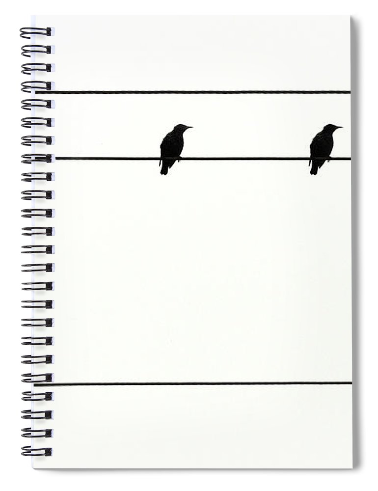 In A Row Spiral Notebook featuring the photograph Birds On Power Lines by Kees Smans