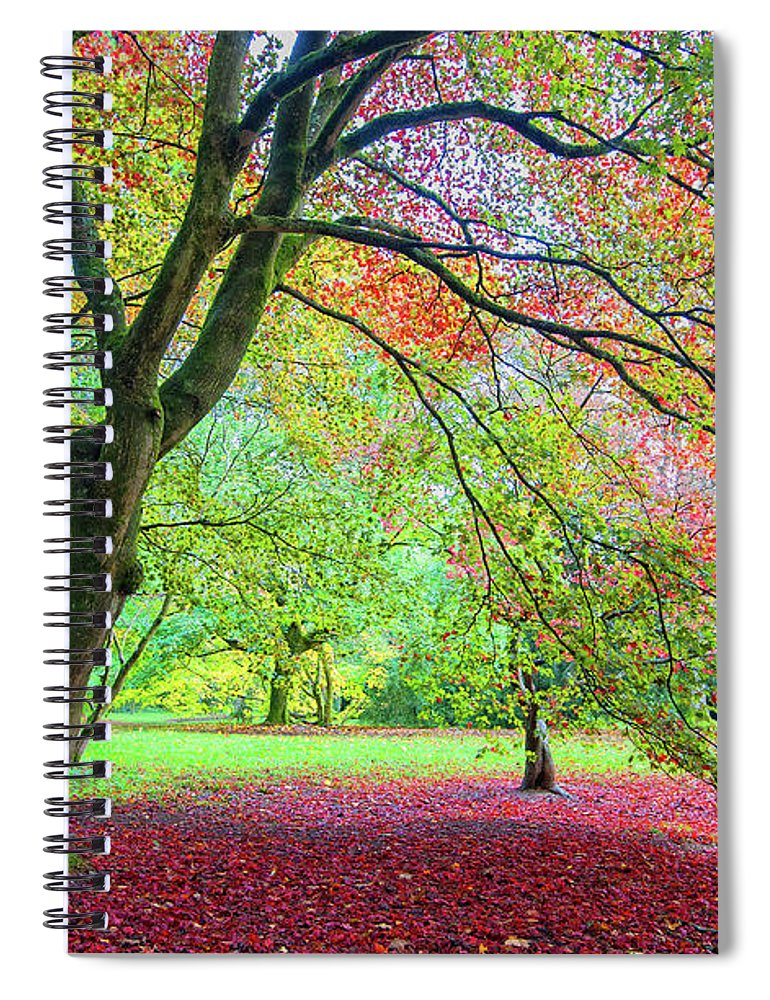 Scenics Spiral Notebook featuring the photograph Bleeding Love by Dylan Borck