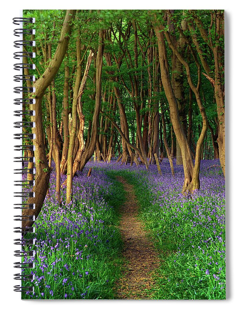 Tranquility Spiral Notebook featuring the photograph Bluebells In Sussex by Photography By Sam C Moore