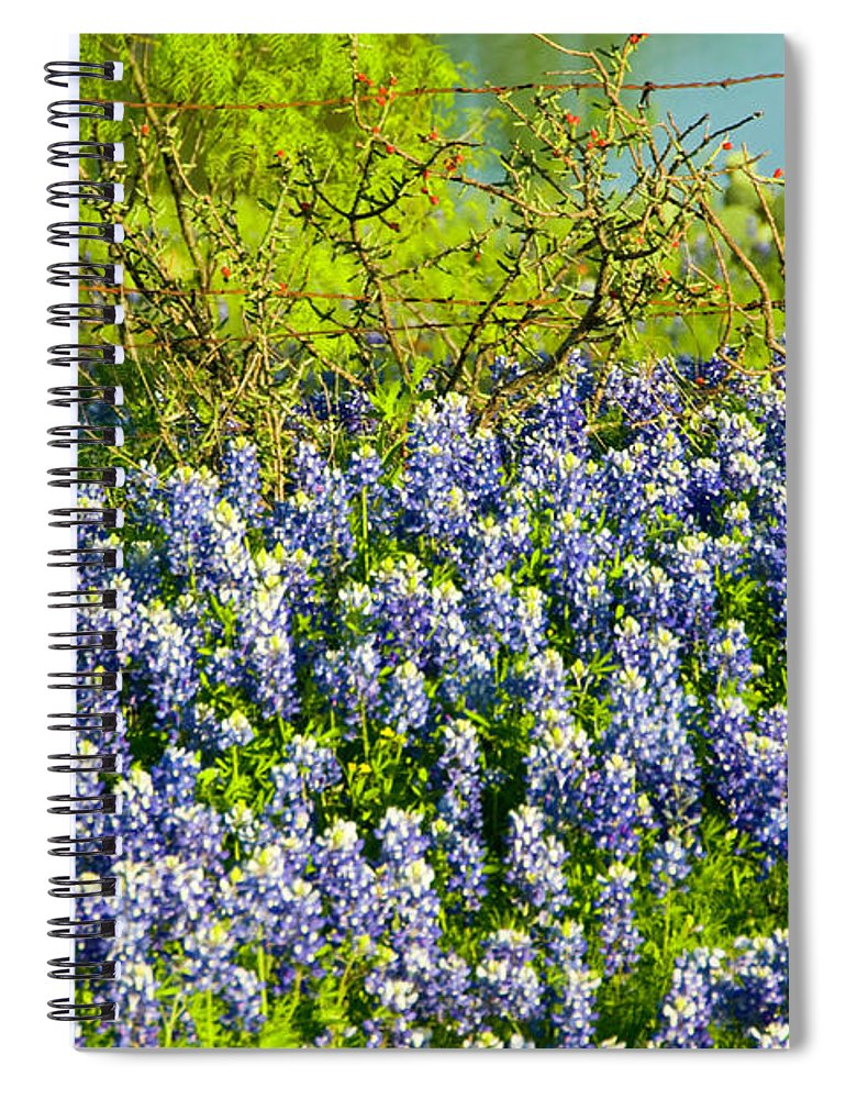 Season Spiral Notebook featuring the photograph Bluebonnets, Texas by Donovan Reese