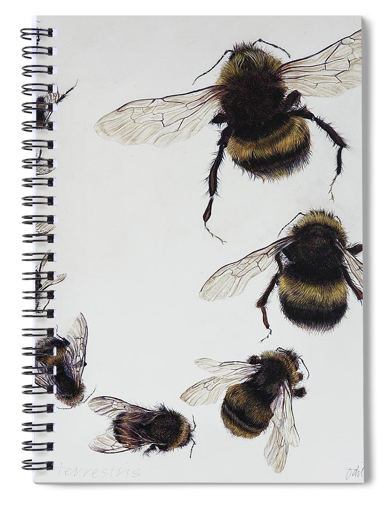 Nature Spiral Notebook featuring the painting Bombus by Odile Kidd