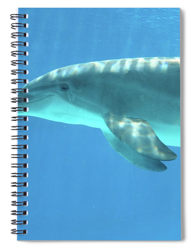Underwater Spiral Notebook featuring the photograph Bottlenose Dolphin by Anzeletti