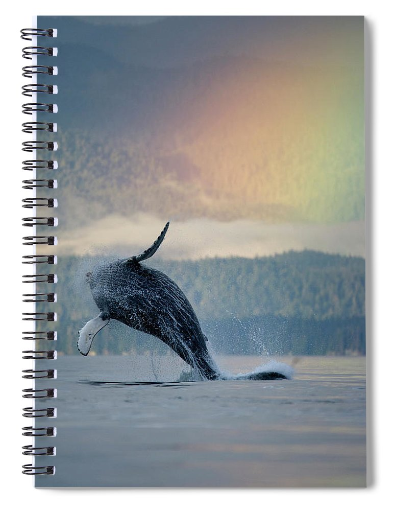 Animal Themes Spiral Notebook featuring the photograph Breaching Humpback Whale And Rainbow by Paul Souders