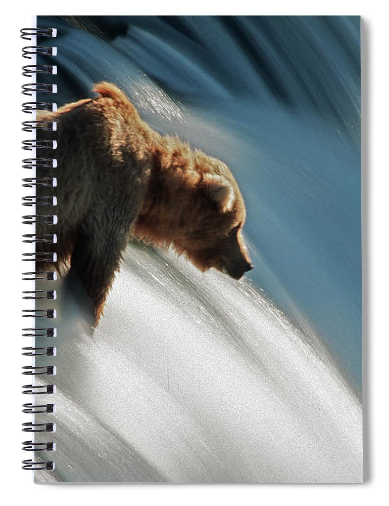 Poetry- Literature Spiral Notebook featuring the photograph Brown Bear At Brooks Falls by Mark Newman