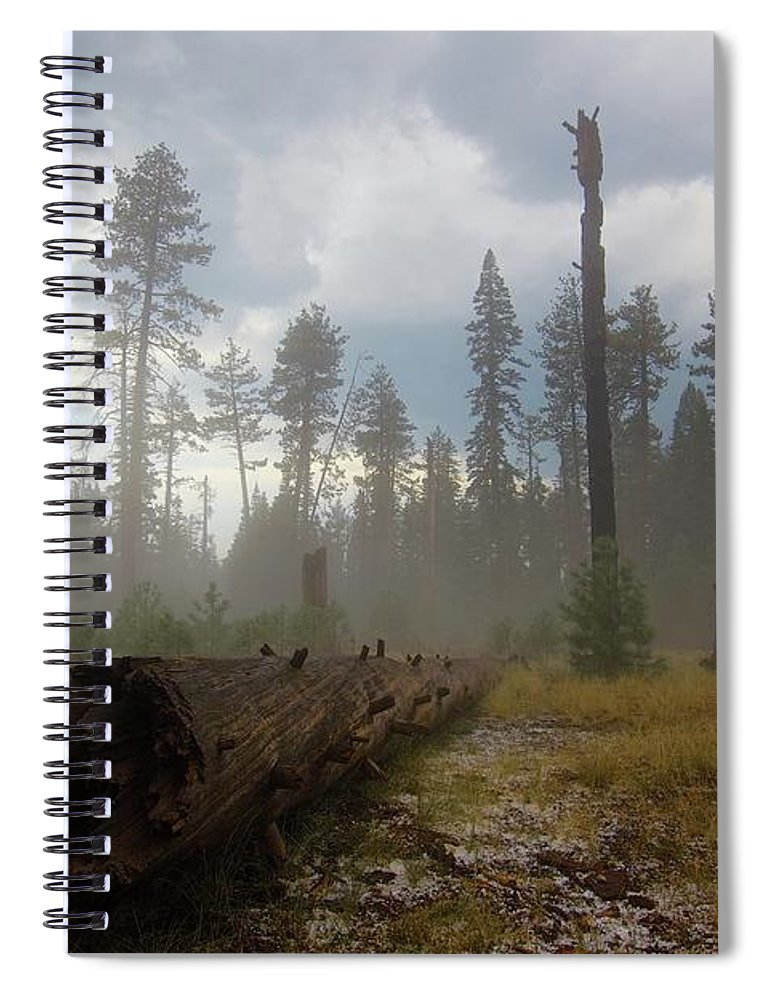 Burnt Spiral Notebook featuring the photograph Burned Trees At Lassen Volcanic by Victor De Souza