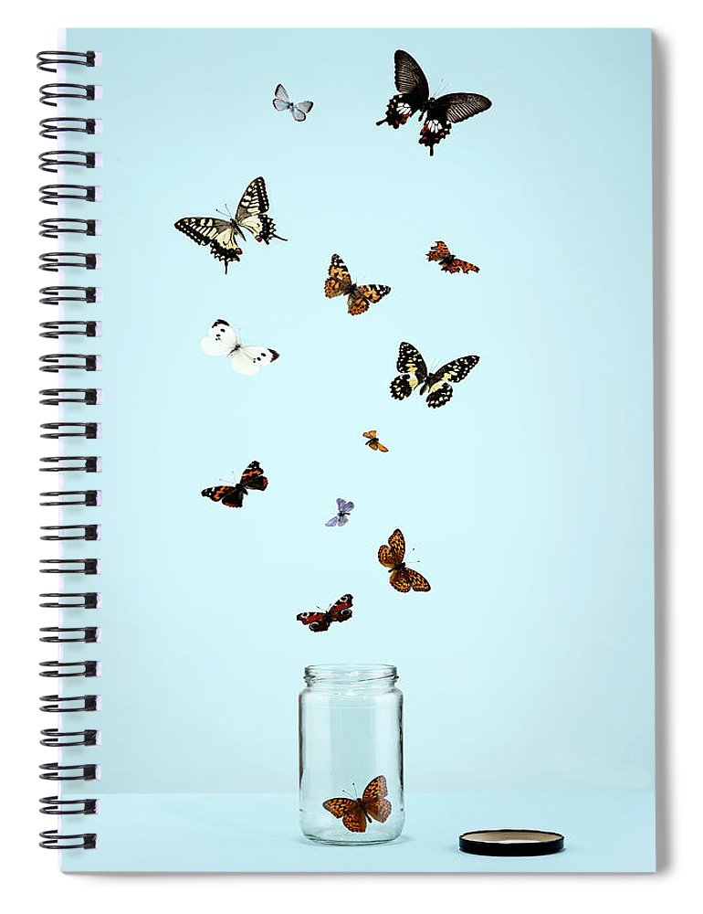 Animal Themes Spiral Notebook featuring the photograph Butterflies Escaping From Jar by Martin Poole