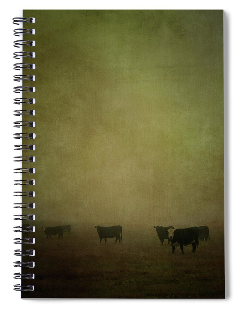 Pets Spiral Notebook featuring the photograph Cattle In The Mist by Jill Ferry
