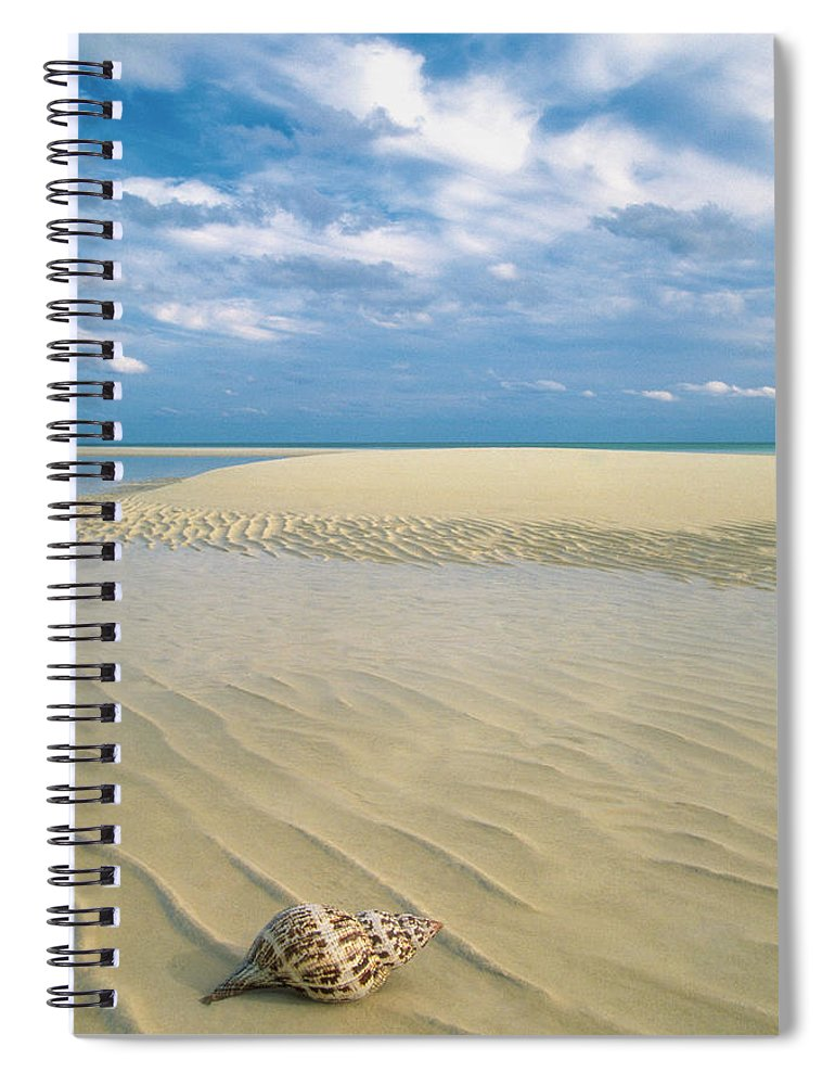 Scenics Spiral Notebook featuring the photograph Conch Shell On Empty Beach In Lucayan by Medioimages/photodisc