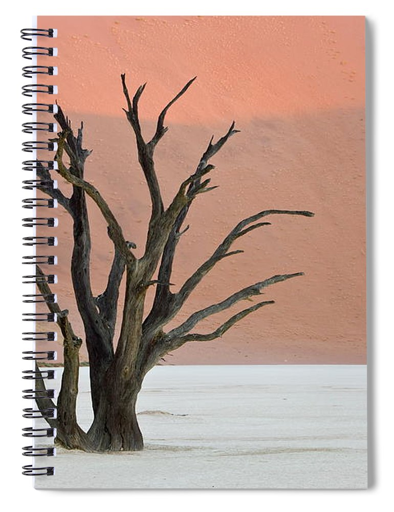 Scenics Spiral Notebook featuring the photograph Dead Vlei Sossusvlei Africa Namibia by Thorsten Milse / Robertharding