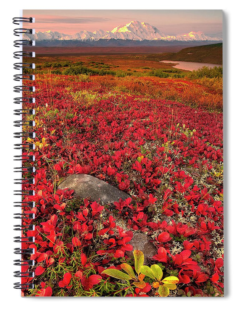 Scenics Spiral Notebook featuring the photograph Denali National Park Fall Colors by Kevin Mcneal
