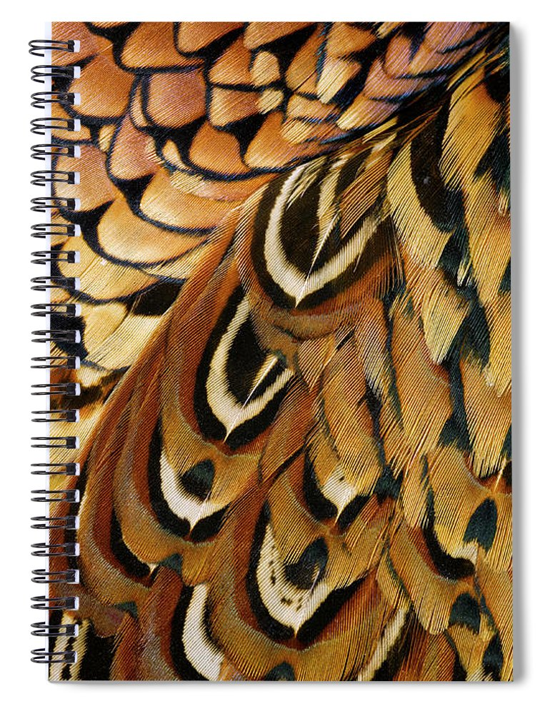 Orange Color Spiral Notebook featuring the photograph Detail Of Pheasant Feathers by Jeffrey Coolidge