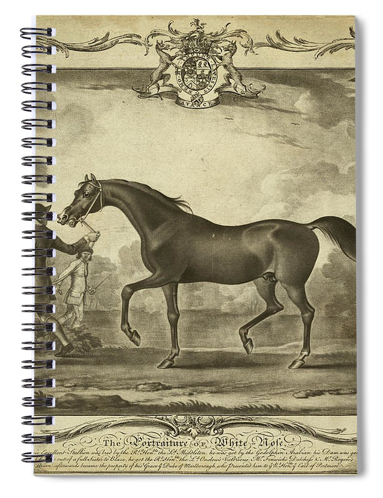 Animals Spiral Notebook featuring the painting Distinguished Horses Iv by Unknown