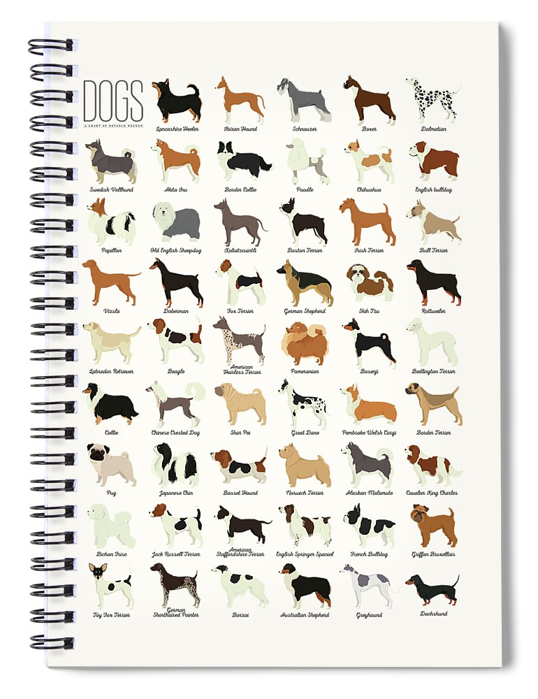 Dogs Spiral Notebook featuring the digital art Dog Breeds by Zapista OU