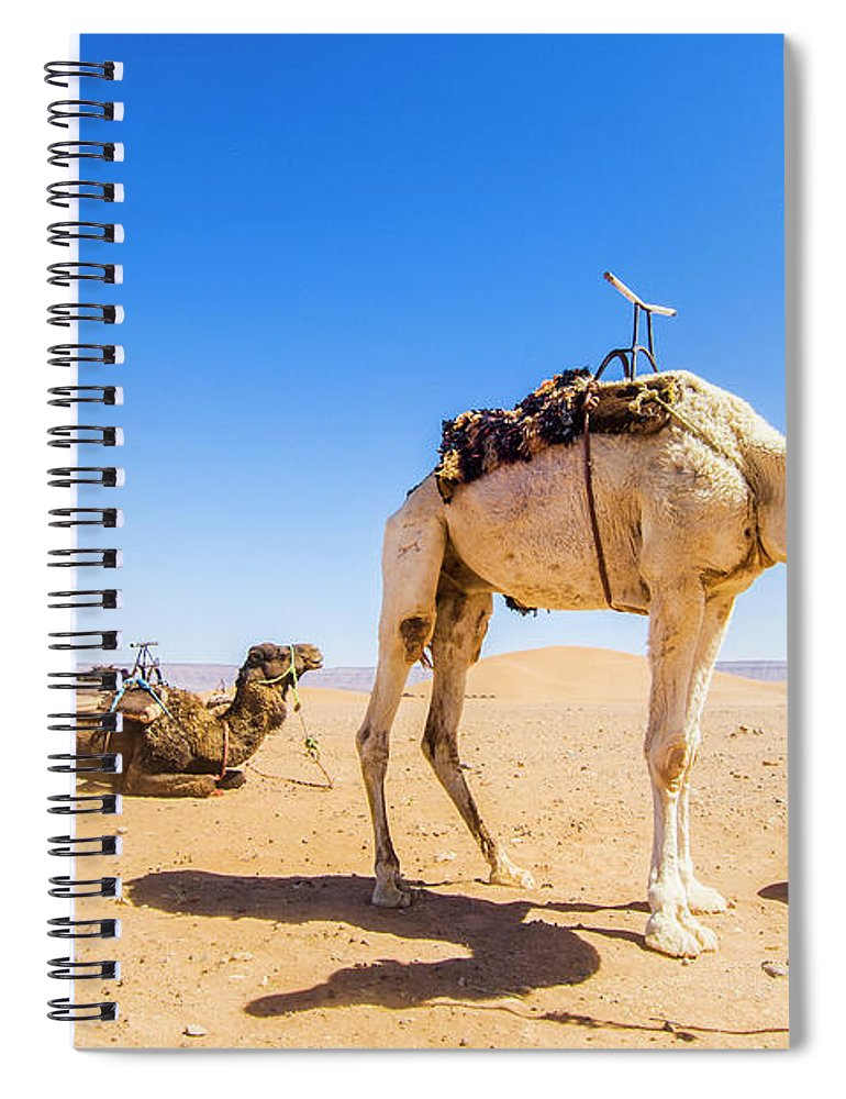 Working Animal Spiral Notebook featuring the photograph Draa Valley, Camel At Tinfou by Maremagnum
