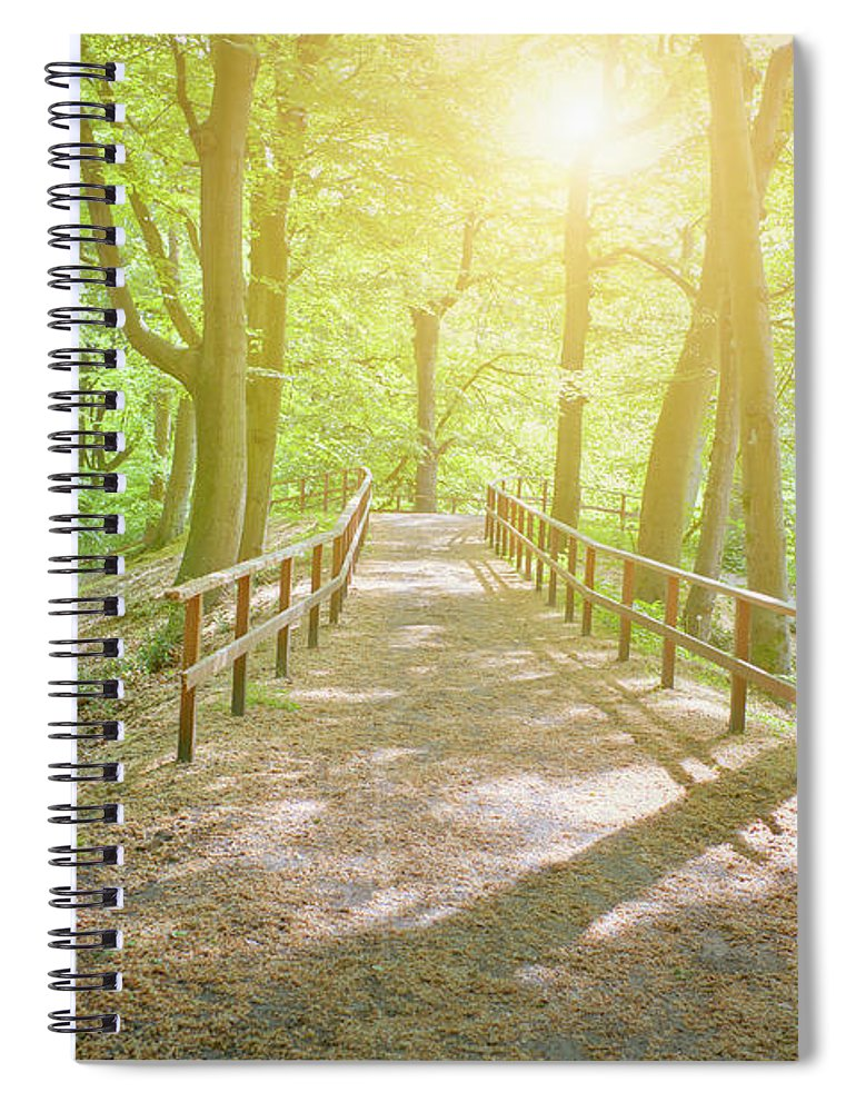 Scenics Spiral Notebook featuring the photograph Dutch Forest With Fenced Footpath And by Cirano83