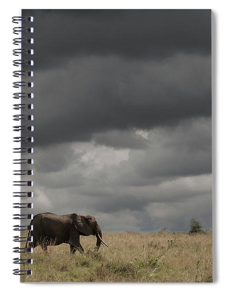 Kenya Spiral Notebook featuring the photograph Elephant Under Cloudy Sky by Buena Vista Images