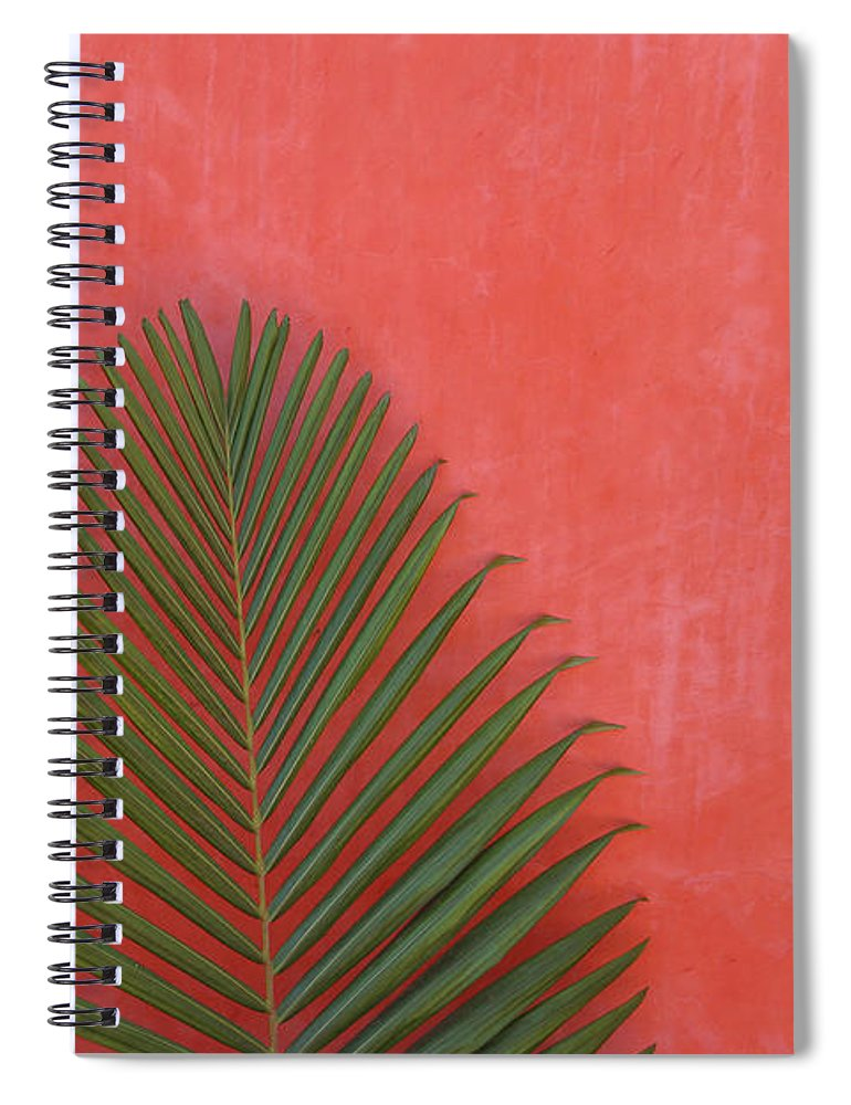 Recreational Pursuit Spiral Notebook featuring the photograph Exotic Background by Lucgillet