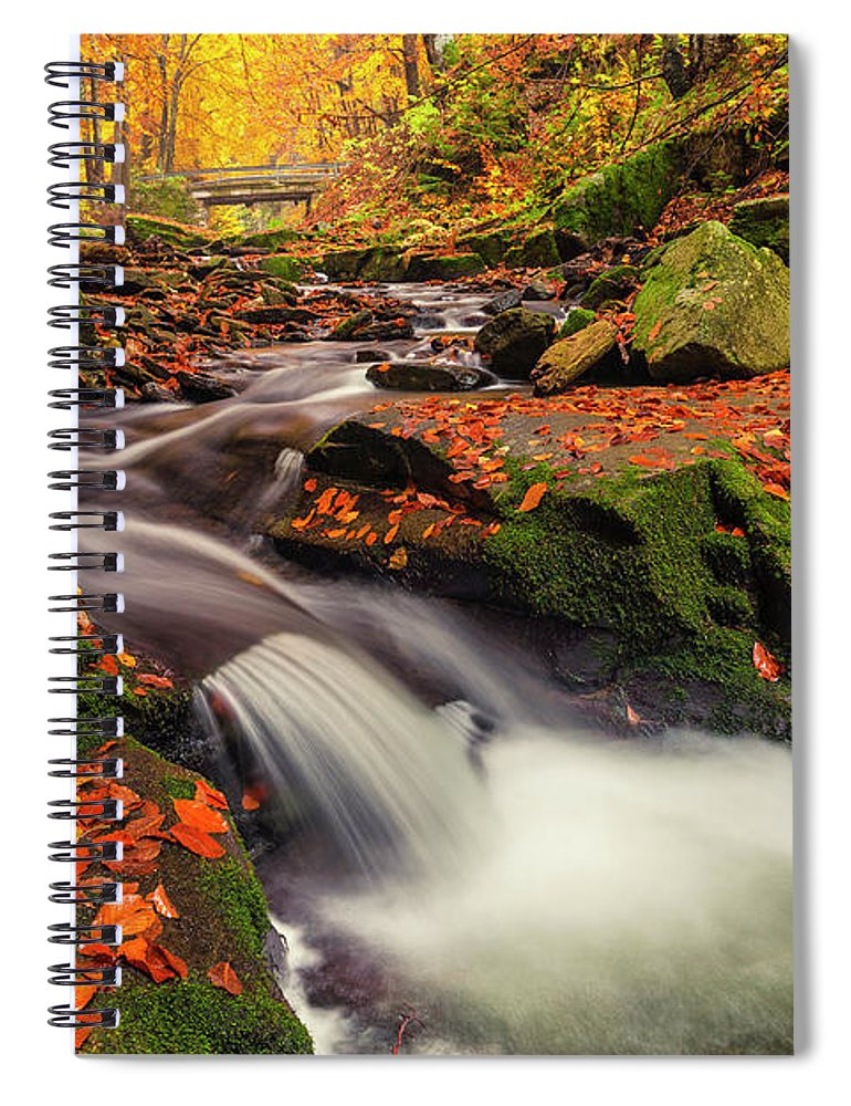 Mountain Spiral Notebook featuring the photograph Fall Power by Evgeni Dinev