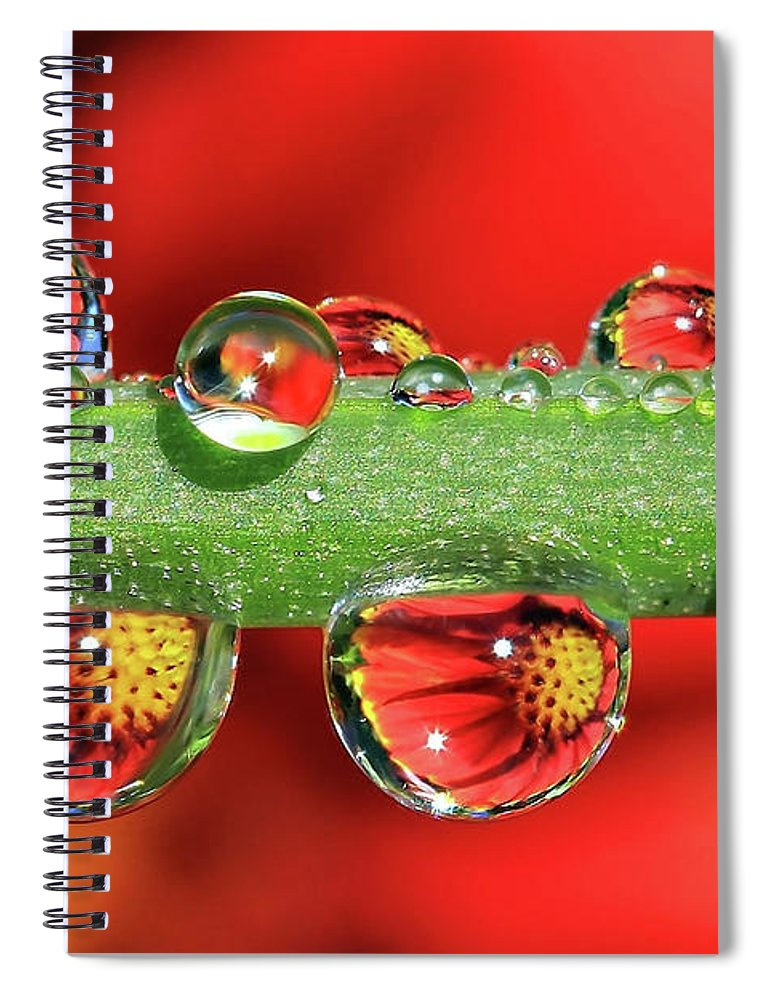 Water Drops Spiral Notebook featuring the photograph Firey Drops by Gary Yost