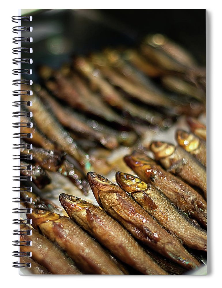 Retail Spiral Notebook featuring the photograph Fish by David Panevin Photography