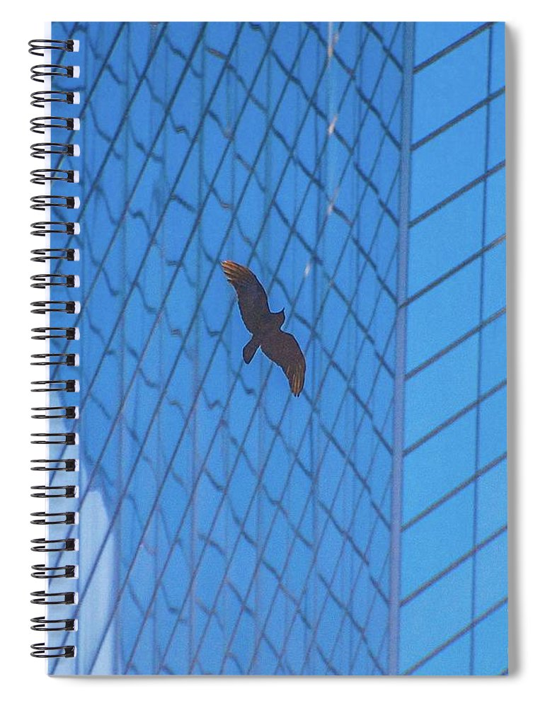 Bird Spiral Notebook featuring the photograph Flying Abstract by D Davila