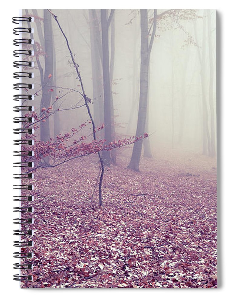 Spooky Spiral Notebook featuring the photograph Fog by Floriana