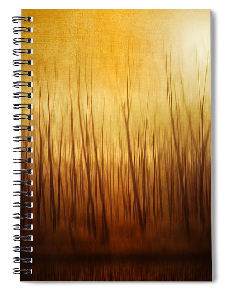 Dawn Spiral Notebook featuring the photograph Forest by Philippe Sainte-laudy Photography