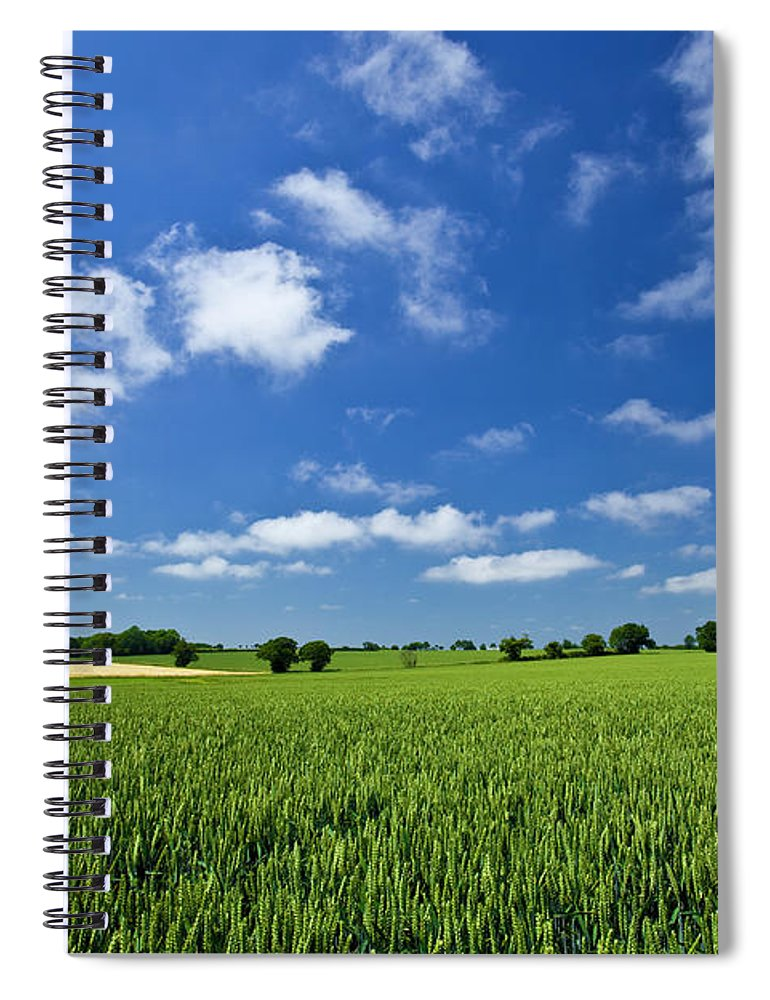 Environmental Conservation Spiral Notebook featuring the photograph Fresh Air. Blue Skies Over Green Wheat by Alvinburrows
