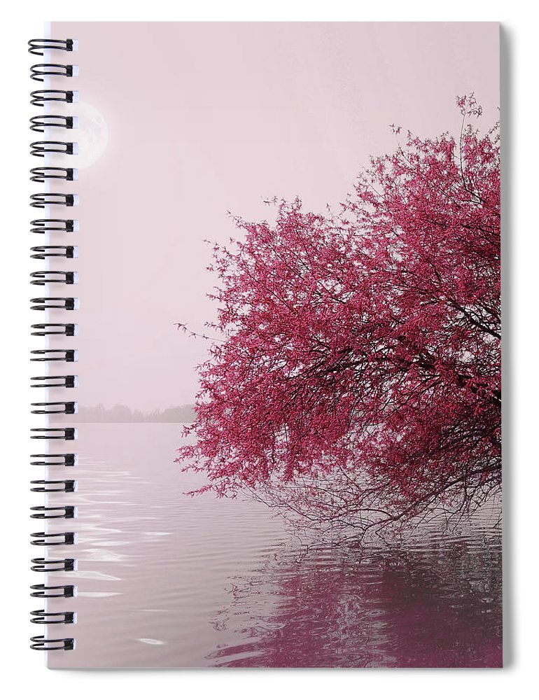 Outdoors Spiral Notebook featuring the photograph Full Moon On The Lake by Philippe Sainte-laudy Photography