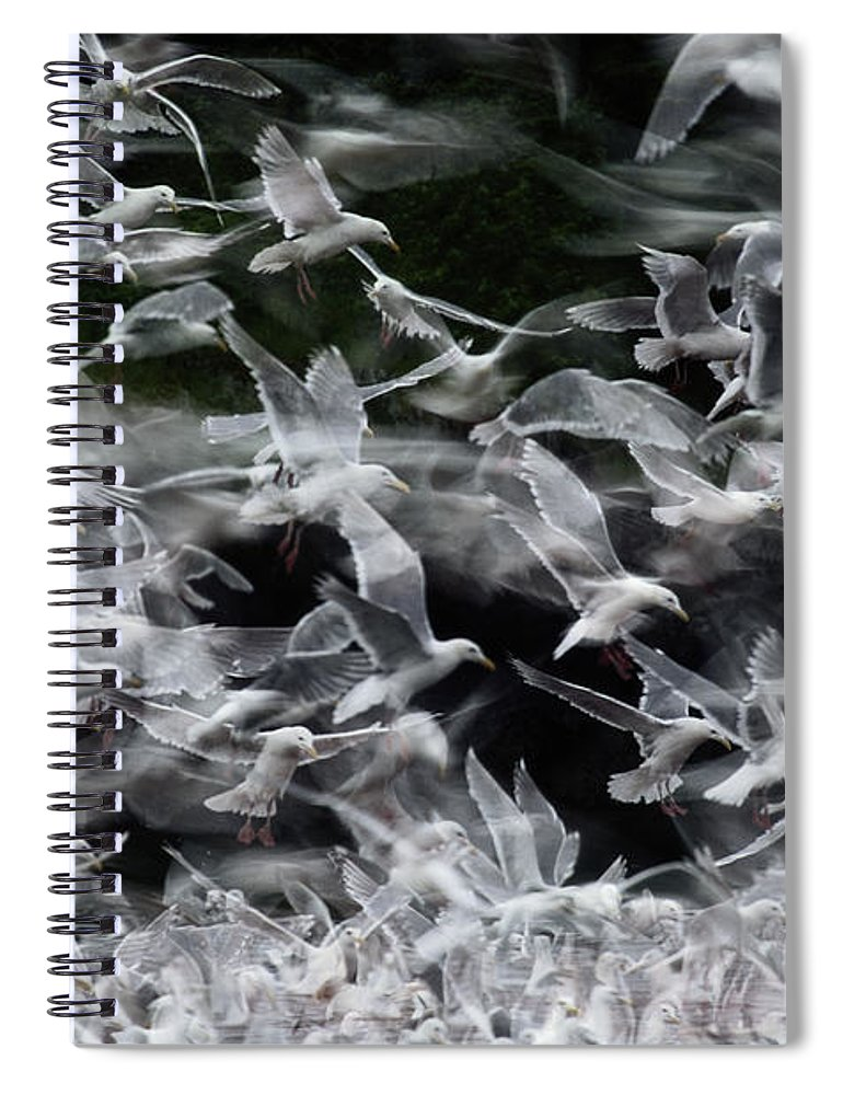 Blurred Motion Spiral Notebook featuring the photograph Glaucous-winged Gulls by Eastcott Momatiuk