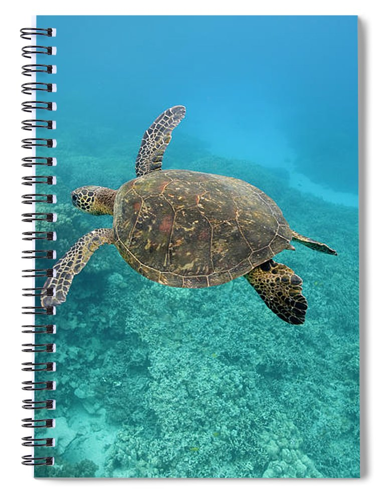 Underwater Spiral Notebook featuring the photograph Green Sea Turtle, Big Island, Hawaii by Paul Souders