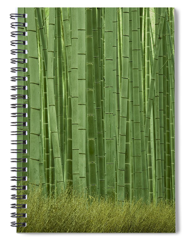 Bamboo Spiral Notebook featuring the photograph Grove Of Bamboo Trees Phyllostachys by Akira Kaede