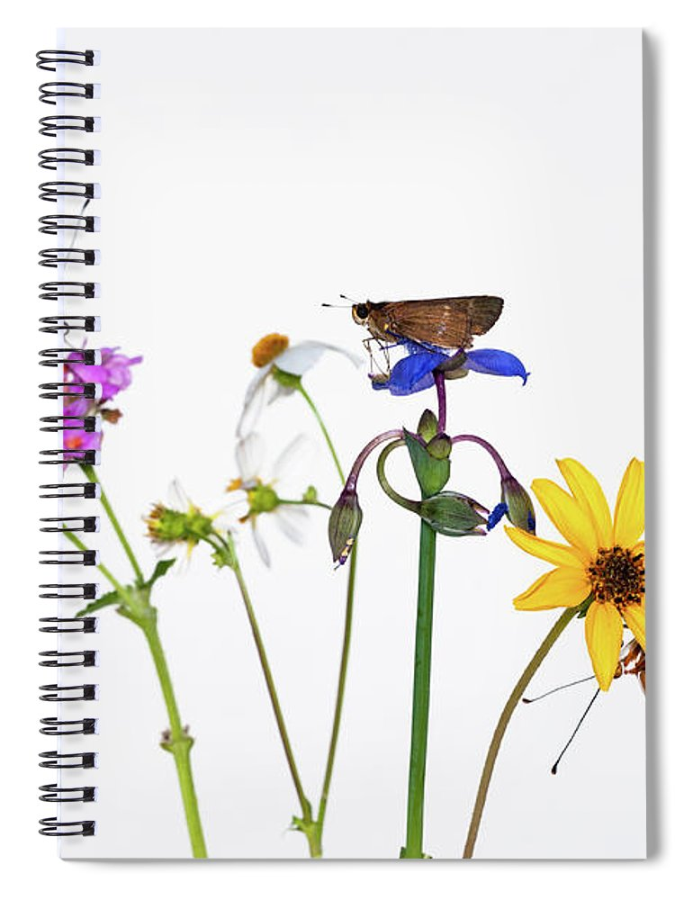 White Background Spiral Notebook featuring the photograph Gulf Fritillary And Brown Skipper by Jim Mckinley