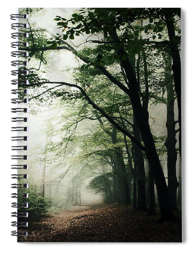 Scenics Spiral Notebook featuring the photograph Haunted Forest by Bob Van Den Berg Photography