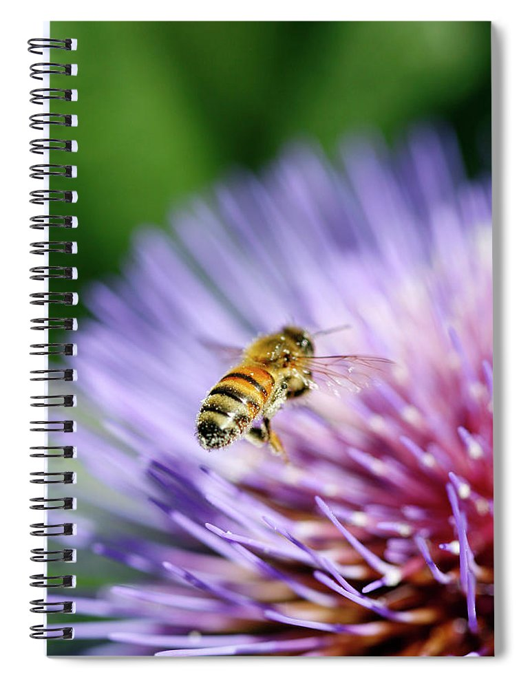 Scenics Spiral Notebook featuring the photograph Honey Bee by Filo