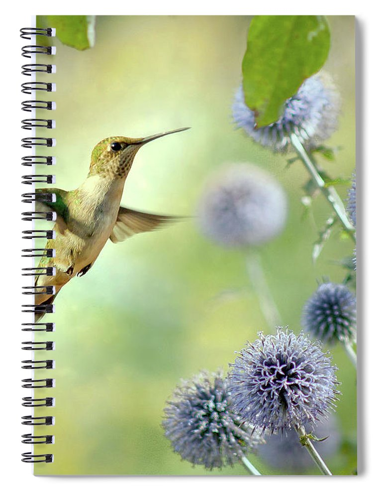 Animal Themes Spiral Notebook featuring the photograph Hovering Hummingbird by Nancy Rose