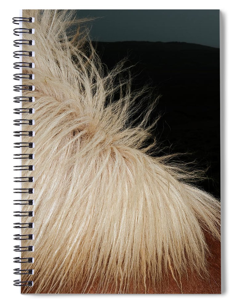 Horse Spiral Notebook featuring the photograph Icelandic Horse by Roine Magnusson
