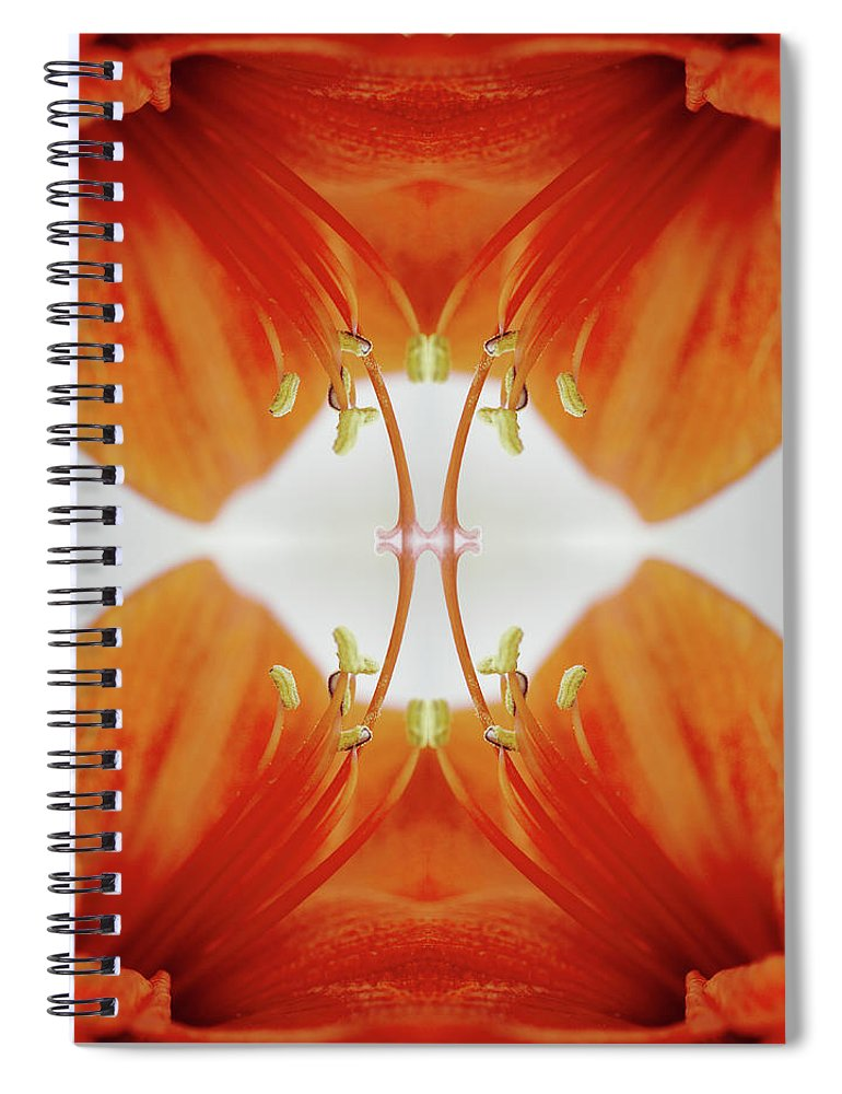 Tranquility Spiral Notebook featuring the photograph Inside An Amaryllis Flower by Silvia Otte