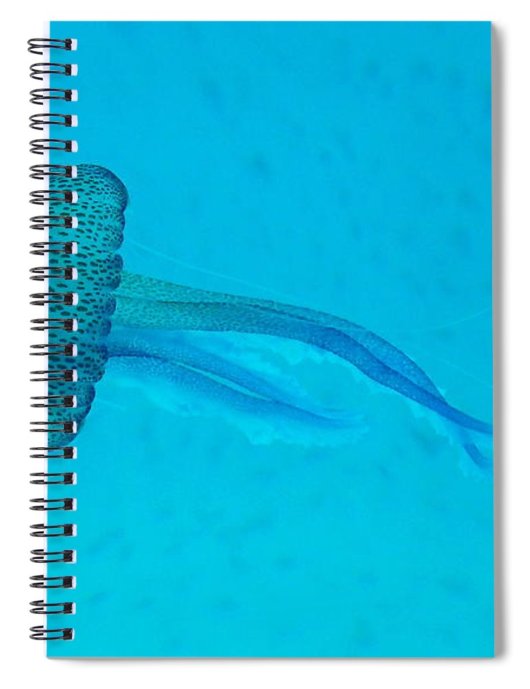 Underwater Spiral Notebook featuring the photograph Jellyfish In Wild by Sir Francis Canker Photography