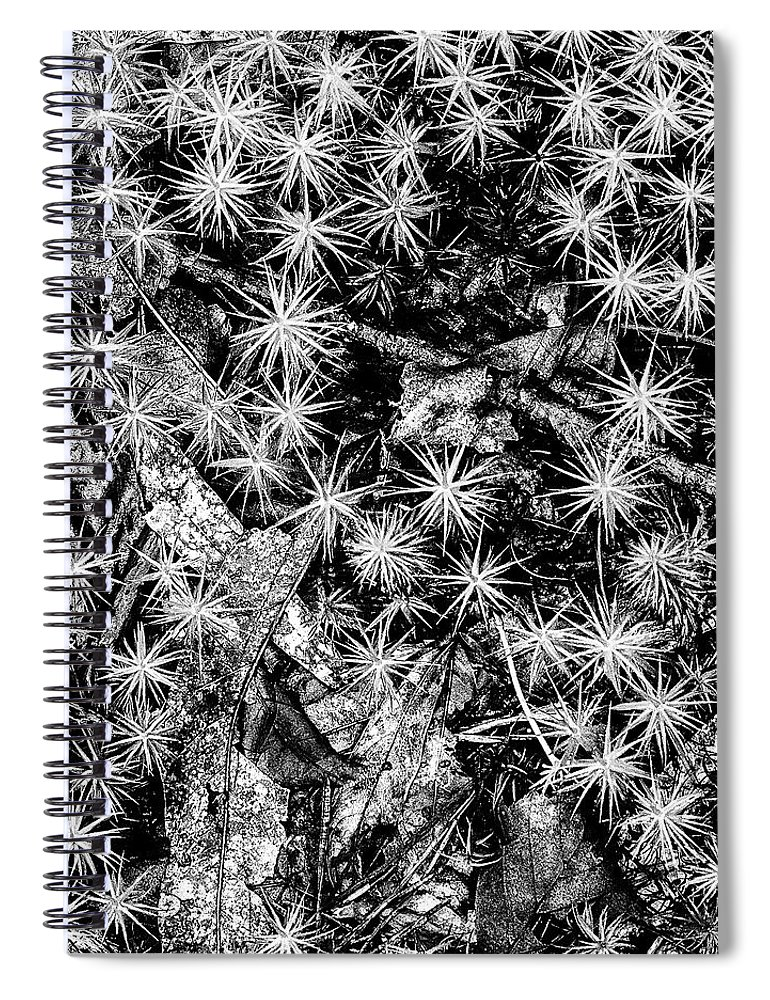 New Jersey Spiral Notebook featuring the photograph Just Moss by Louis Dallara