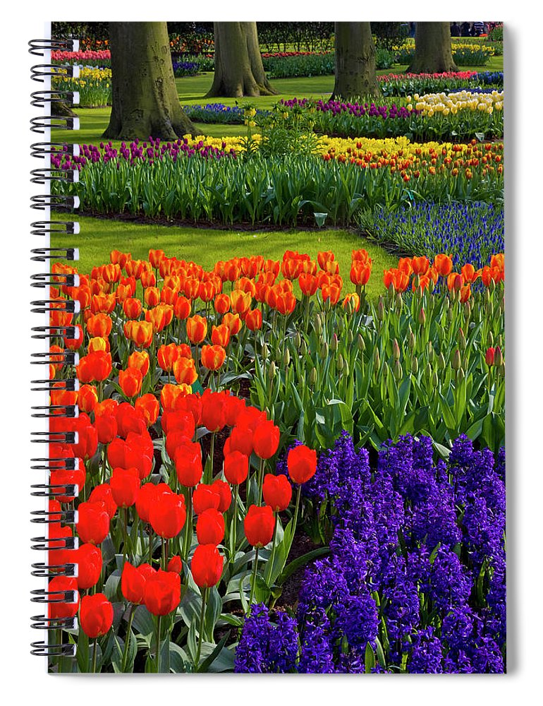 Flowerbed Spiral Notebook featuring the photograph Keukenhof Gardens In Holland by Darrell Gulin