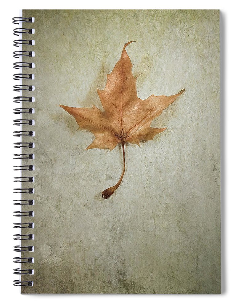 Leaf Spiral Notebook featuring the photograph Last Days by Scott Norris