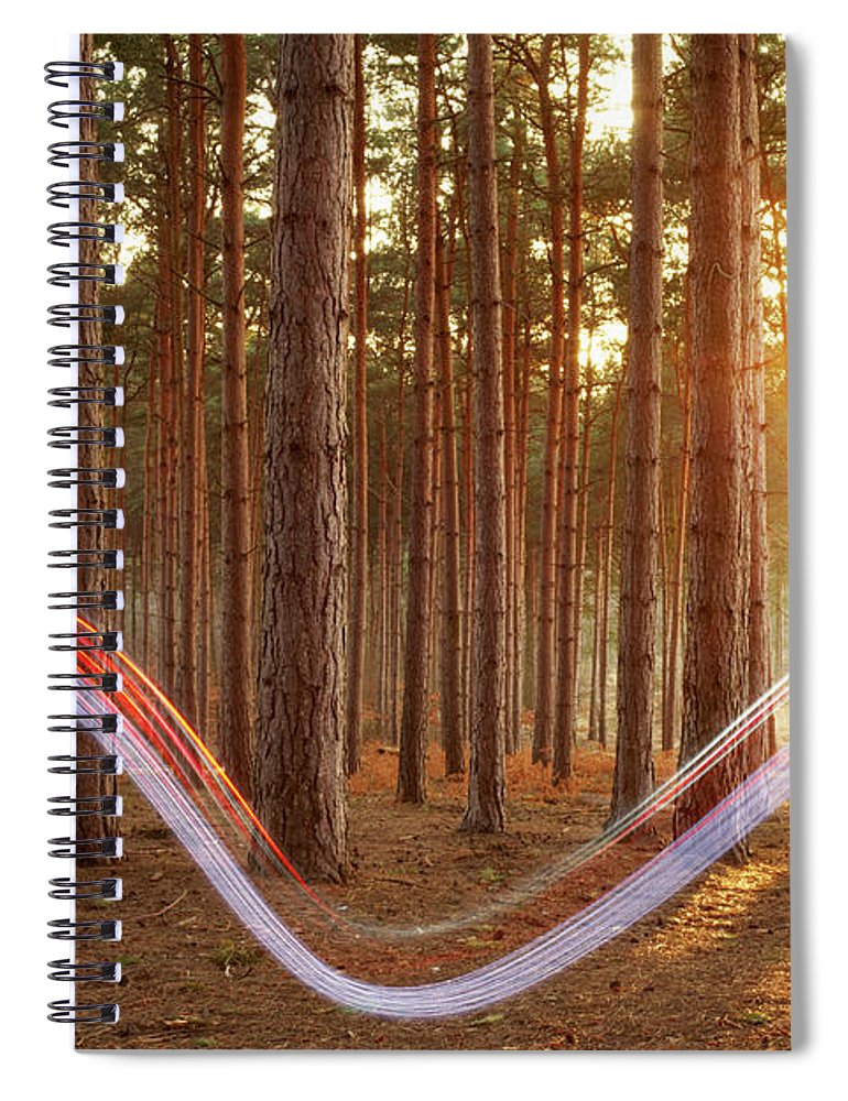 Environmental Conservation Spiral Notebook featuring the photograph Light Swoosh In Woods by Tim Robberts