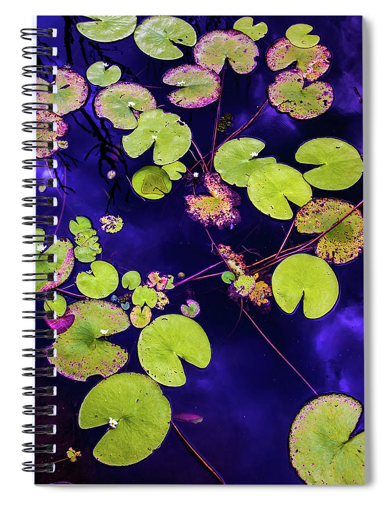 Nature Photography Spiral Notebook featuring the photograph Little Pac Mans by Az Jackson