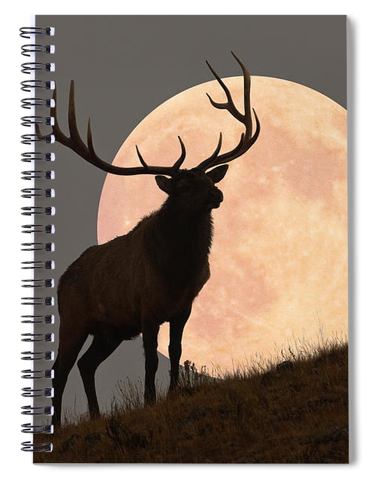Horned Spiral Notebook featuring the photograph Majestic Bull Elk And Full Moon Rise by Mark Miller Photos